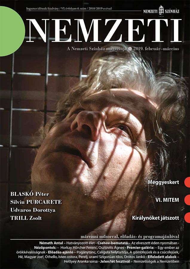 Nemzeti Magazin VI. Évfolyam, 6. Szám