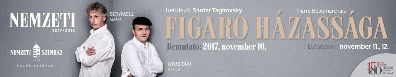 Figaro banner